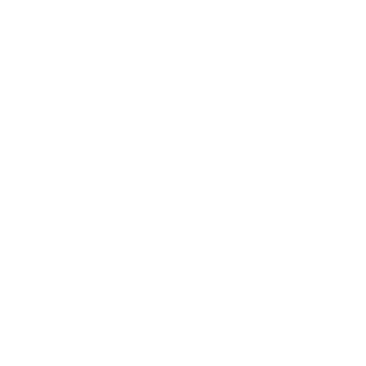 The Bridge Run 2017